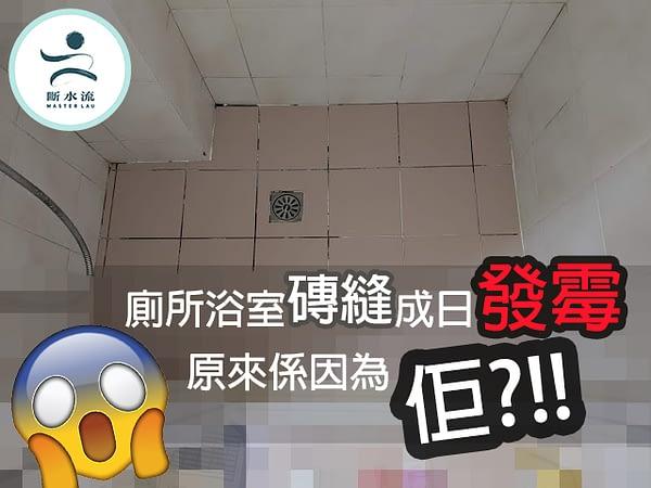 廁所浴室磚縫成日發霉 原來係因為佢?!!